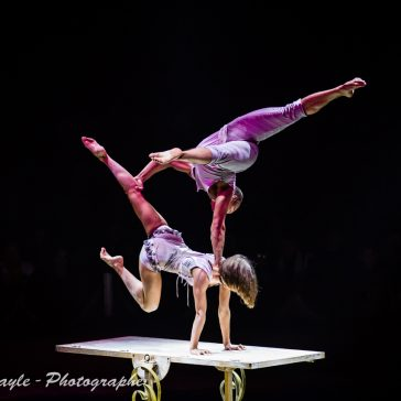 Festival international des artistes du cirque / Photographe Landes